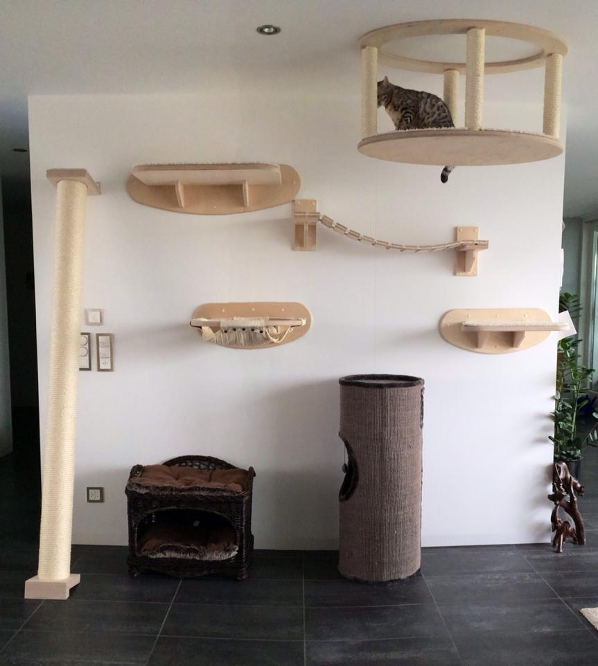 goldtatze fotos. Black Bedroom Furniture Sets. Home Design Ideas